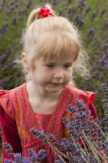 Girl in lavender field before oil painting effect
