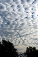 ALTOCUMULUS AND DISTRAILS