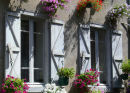 french windowbox