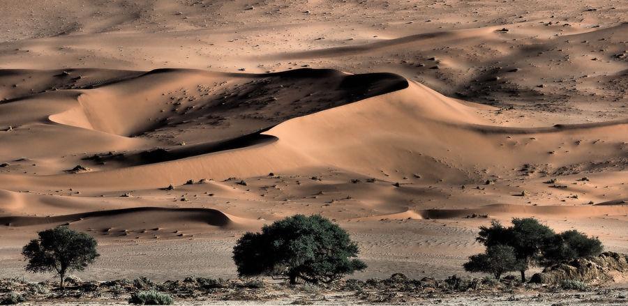 Namibia -1