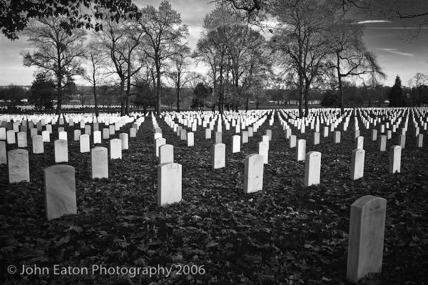 Arlington National Cemetery #1