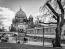 Berlin Dom & Spree