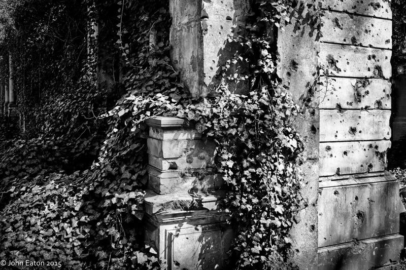 Jewish Cemetery #11