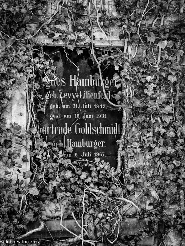 Jewish Cemetery #12