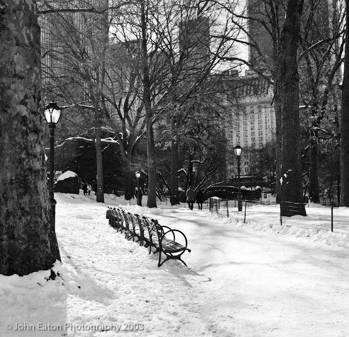 NY, Central Park Bench
