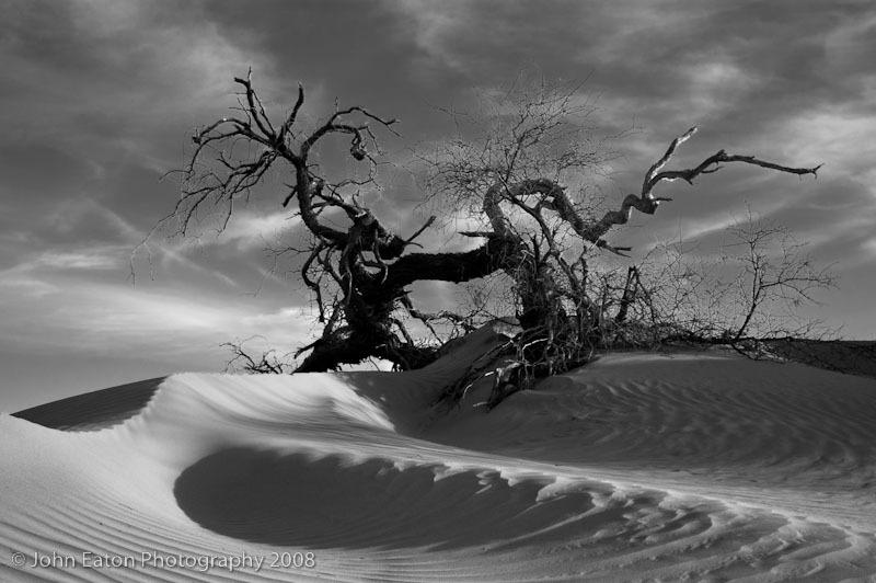 Death Valley, Dead