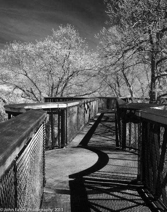 Kew, Tree Walk