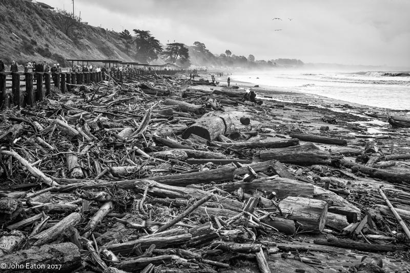 Seacliff Storm #5
