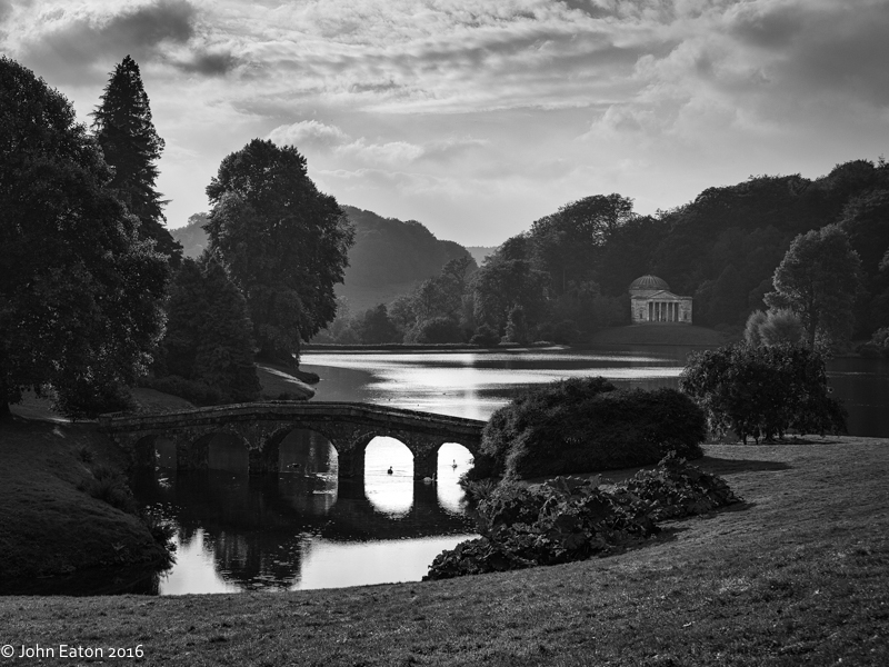 Swans at Stourhead