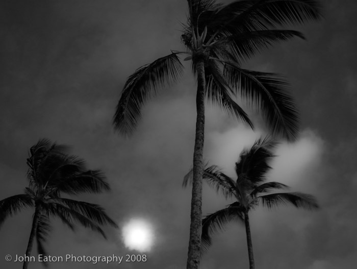 Ka'apa, Palms & Full Moon