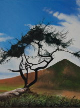 The Lone Tree, East of Roseberry Topping - Original Oil Painting - SOLD