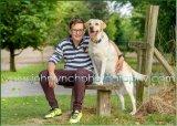 FAMILY PHOTO SESSIONS ASHFORD KENT PHOTOGRAPHER