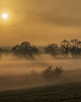 Hertfordshire Dawn