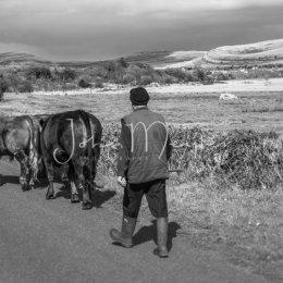 B&W-8 Farmer of the Burren, Co Clare