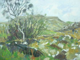 Framed.For sale £80.Oil on canvas. Carl Wark & Higger Tor from below Burbage Moor, across the road from the Longshaw Estate.