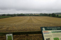 The Battlefield at Naseby