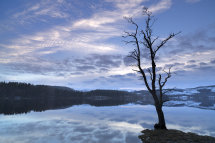 0339 Loch Ard Dawn Aberfoyle The Trossachs
