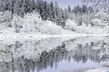 5555 Loch Achray Aberfoyle The Trossachs