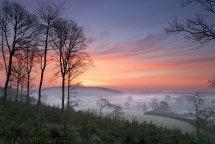 3044 Hovingham Sunrise