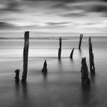 8837 LE Timeless Tides