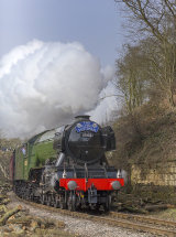 9201 The Flying Scotsman