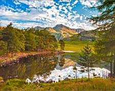 Blea Tarn Loose Prints & Stretched Canvas