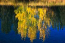 Autumn reflection, Banff National Park