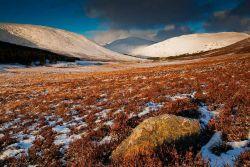 Cairngorn winter light