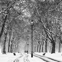 Winter in Hyde Park
