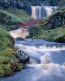 'Rowan Tree Falls'