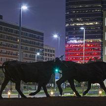 Dallas, USA.