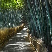 Arashiyama, Japan.
