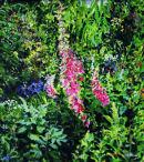 June Garden 1