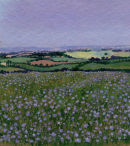 Landscape with Linseed.Dorset.