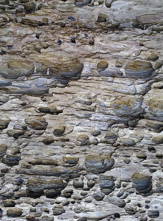 Geologica X