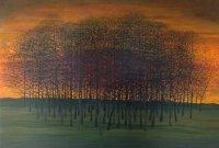 Sunset at Sealings Wood