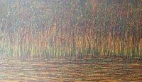Twilight at Sealings Wood