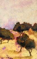 Olive trees, Bensafrim