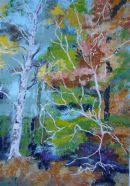 Autumn Birches in the New Forest