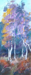 Birches in the New Forest