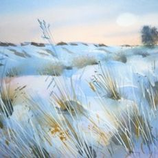 January Snow, Salisbury Plain