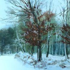 Snowy Beeches, Sandy Lane