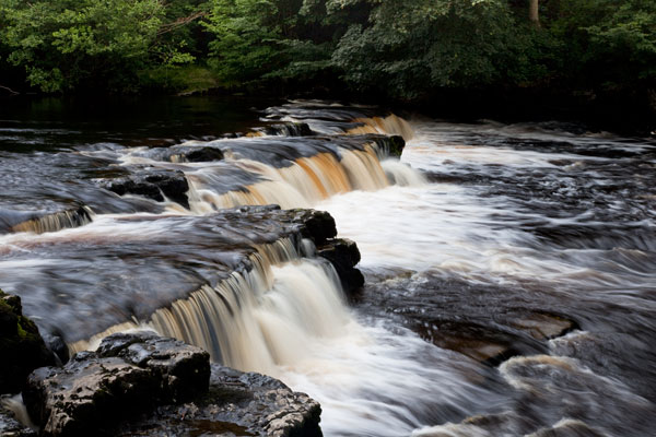 Redmire Force on the River Ure, Wensleydale
