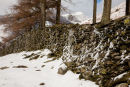 Snow driven against dry stone wall below Blencathra