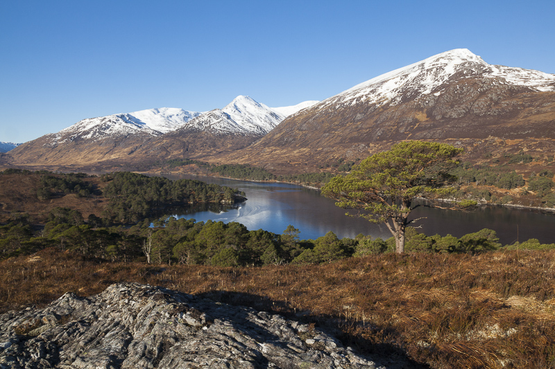An Tudair and Sgurr na Lapaich overlooking Loch Affric