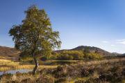 Loch Tarff, South Loch Ness