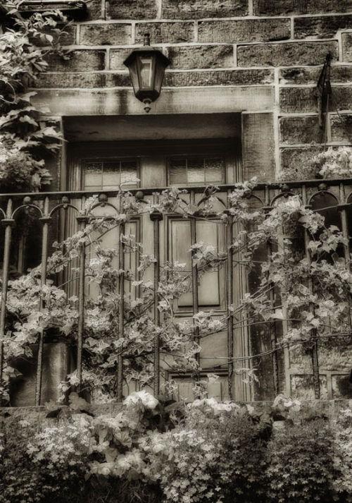 Haworth House