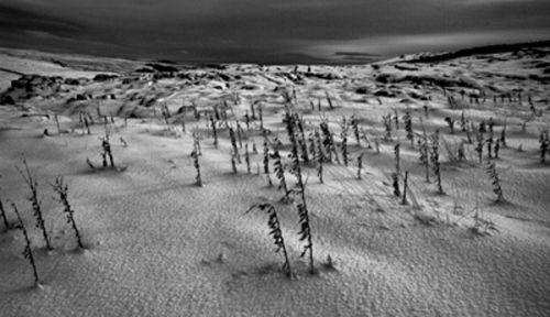 Cold Malham Moor