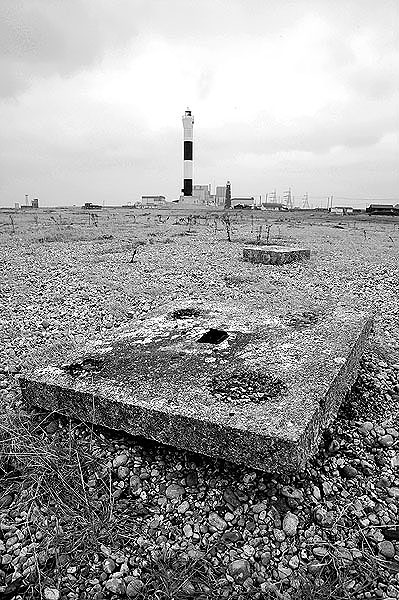 Dungeness12