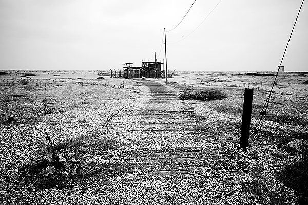 Dungeness17